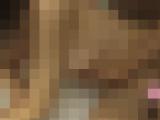 【個人撮影】小動物系女子大生を手マン・クンニ・おもちゃで犯しつくして中出しフィニッシュ!!